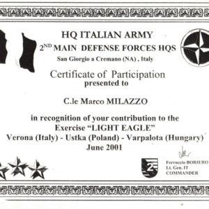 Light_Eagle