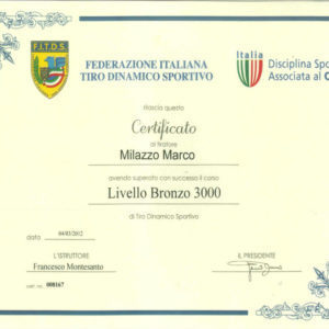 Livello_Bronzo